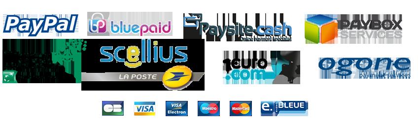 Dorboweb partenaire des systèmes de paiement bancaires