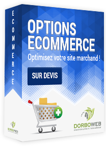 Modules et options ecommerce