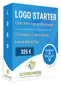 Création de votre logo profesionnel sur mesure pour 325 €
